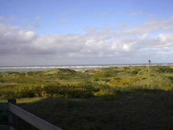 25. Jubiläum des Heringsfestivals im Fischerei- und Urlaubsort Hvide Sande