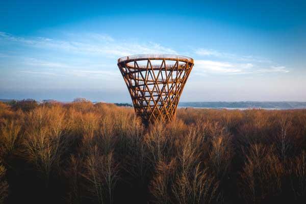 360-Grad-Panorama über den Baumwipfeln: Seelands höchster Aussichtsturm eröffnet